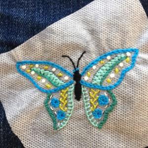 vlindertje met soluvlies